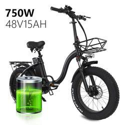 Electric bike 48V15A 20