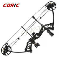 Compound Pulley Bow & Arrow Sets 30-70 lbs Adjustable Bow Hunting Outdoor Sports Hunting Shooting