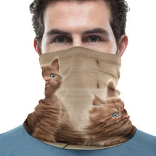 Cute Cat Pattern Face Mask Neck Gaiter Multifunctional Bandana Balaclavas Breathable Magic Scarf for Men Women(China)
