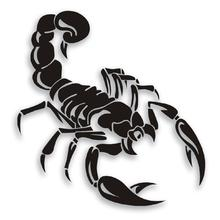 HobbyLane Cool 3D Black White Color Scorpion Common Car Stickers Creative Styling Vinyl Decal