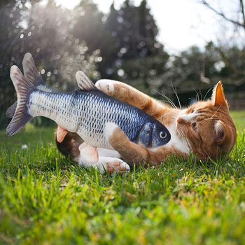 Cat Toys Interactive Electric Cat For Game Electronic USB Charging Switch Catnip Fish Playing Runnin