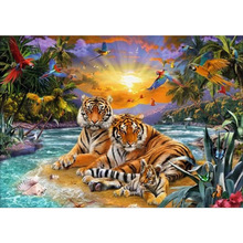 Oil Painting By Numbers Tiger Animal Drawing On Canvas HandPainted Art Gift DIY Picture By Number Kits Home Decoration Frameless wonzom beach flower oil painting by numbers diy abstract digital picture coloring by numbers on canvas unique gift for home 2017