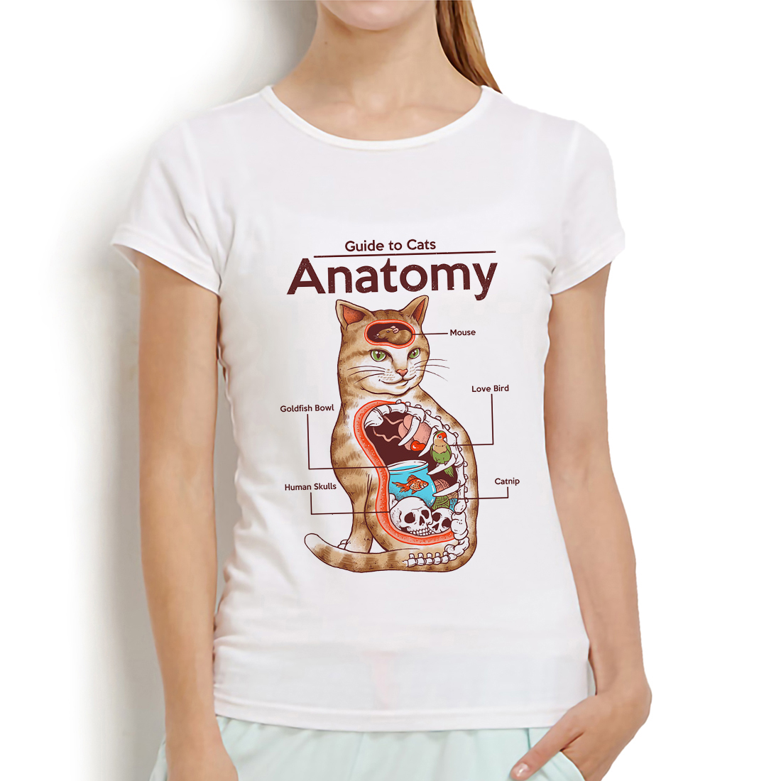 Anatomy of a Cat <font><b>funny</b></font> <font><b>t</b></font> <font><b>shirt</b></font> <font><b>women</b></font> summer new white casual short sleeve tshirt femme kawaii meow streetwear <font><b>t</b></font>-<font><b>shirt</b></font> image