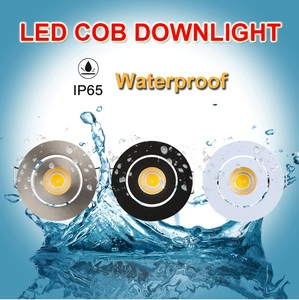 Image 2 - IP65 MINI wpuszczane LED wodoodporna lampa ze ściemniaczem na zewnątrz 3W AC90 260V/DC12V oświetlenie sufitowe LED punktowe lampy sufitowe LED