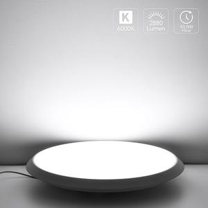 LED Ceiling Light Cold White L