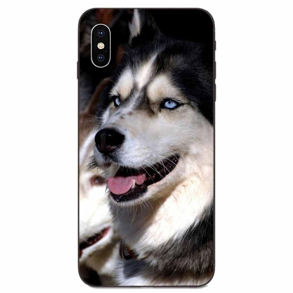 Capa noir en Silicone souple pour Xiao mi rouge mi Note 2 3S 8 9 Lite SE Pro Alaskan Malamute chien Husky sibérien