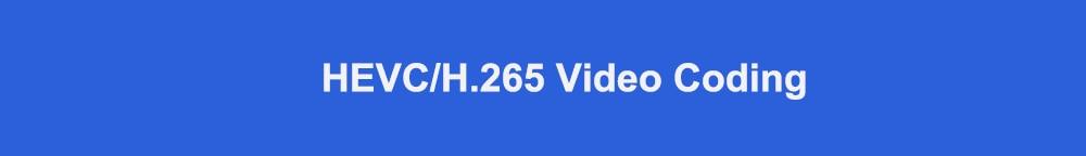 HEVC H.265 video coding标题