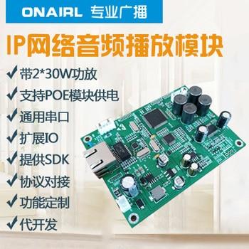 IP Broadcast Audio Module 2*30W Network Decoder