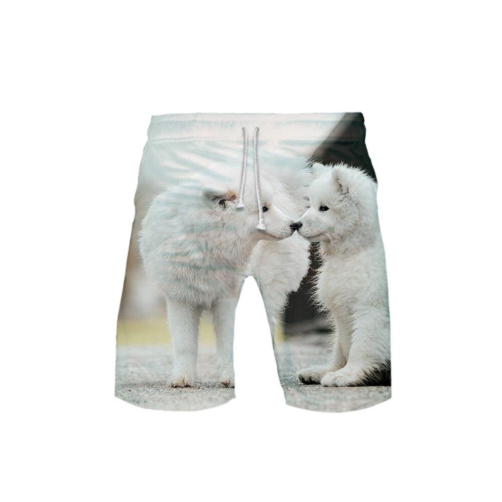 Women's 3D Samoyed Templar 3D Board Shorts Trunks 2019 Summer Quick Dry Beach Samoyed Shorts Women Hip Hop Short Pants