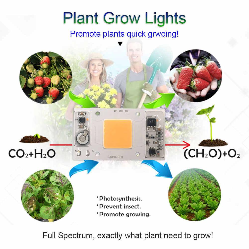 95% RA 50W COB LED מנורת AC 220V ספקטרום מלא ללא נהג 95 CRI LED הנורה לצמחים לגדול אור זרקורי חכם IC