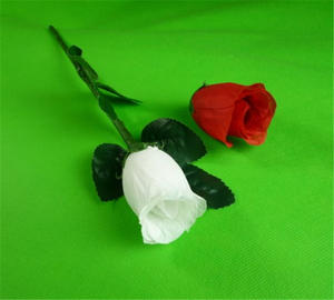 Magic Tricks Rose Flower Regeneration Gimmick-Props Comedy Vanish Illusions Magnetic