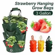 3 galon çilek tohumları büyüyen çanta dikim çanta patates dikey meyve bahçesi asılı sebze dikim çanta büyümek