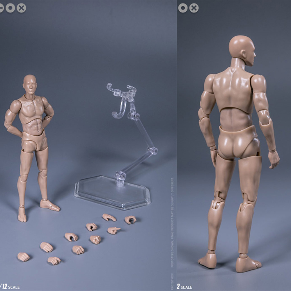 1/12 Scale DAMTOYS DPS01 Male DARWMAN Body Action Figure With Accessories