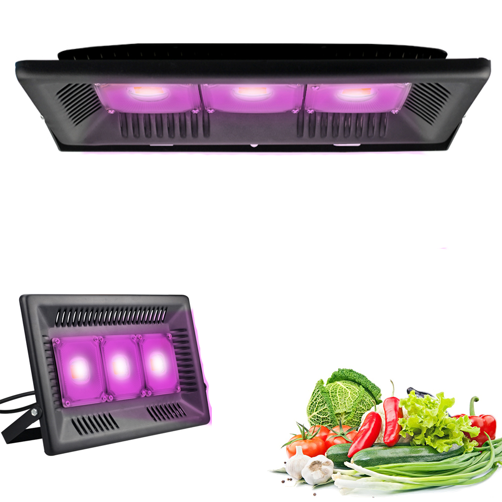 COB Full Spectrum LED Grow Light 300W Growth  Flood Light Waterproof Phyto Lamp For Indoor Plant Growbox Hydroponic
