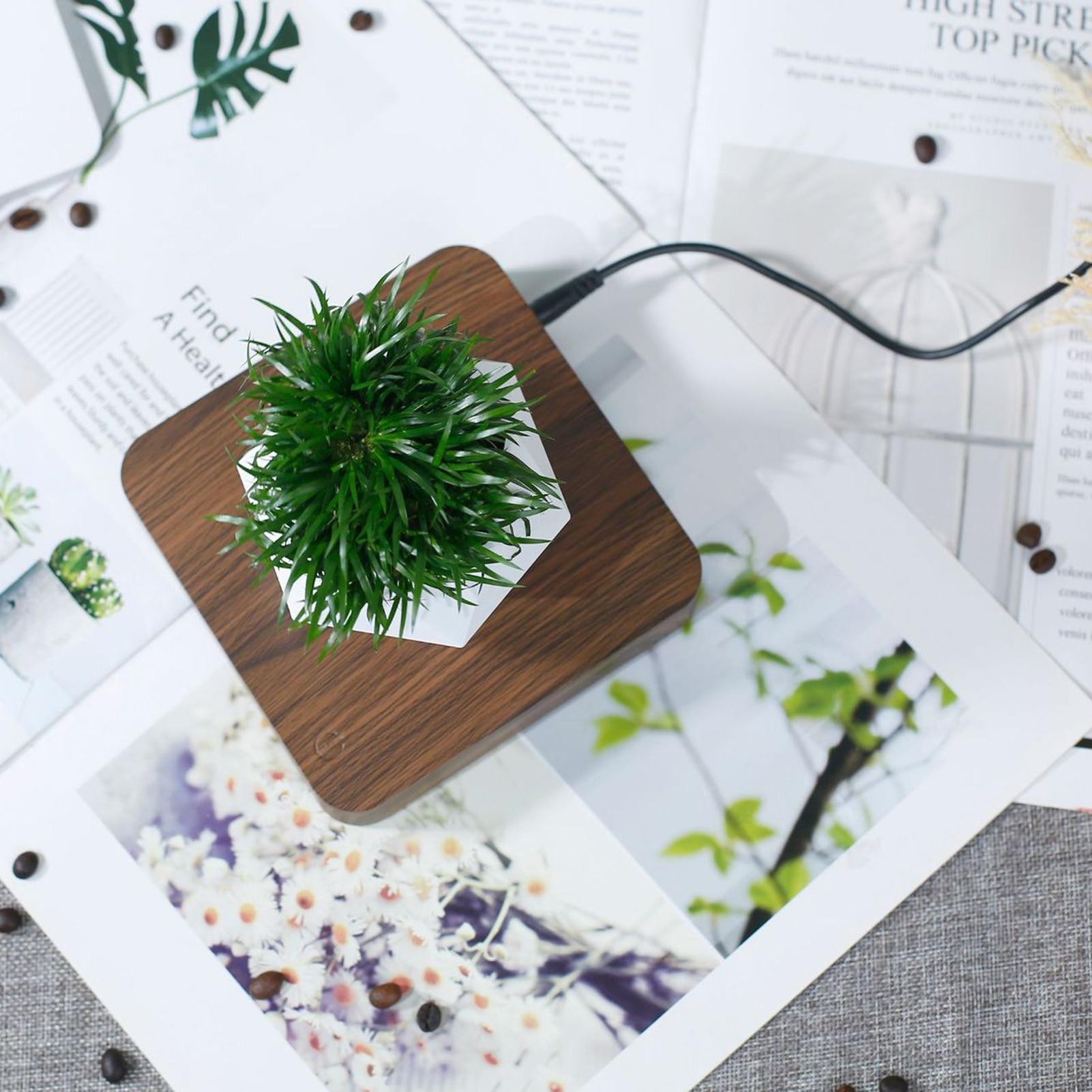 Левитирующий воздух бонсай горшок магнитный вращение цветок горшок растение горшок суккулент горшок патио дом декор рабочий стол зеленый растение цветок горшок