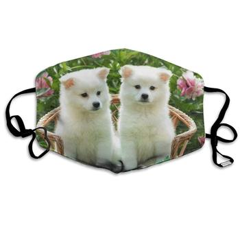 Premium Dust Mask - Washable Breathable Mouth Face Mask - Adjustable Ear Loop for Kids Women Men Samoyed Dog in The Chair
