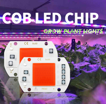 칩 Phyto 램프 LED 식물 Ccessories 조명 1PC 20W 30W 50W 야외 공급 성장 실내 COB 모 종 성장 램프