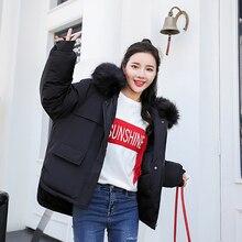 Winter women jacket coat parkas 2019 Fashion Thick warm big fur collar oxford fabric windproof short Sintepon padded