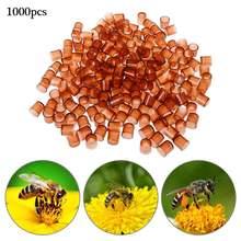1000 шт пластмассовые клетки для пчелиных маток