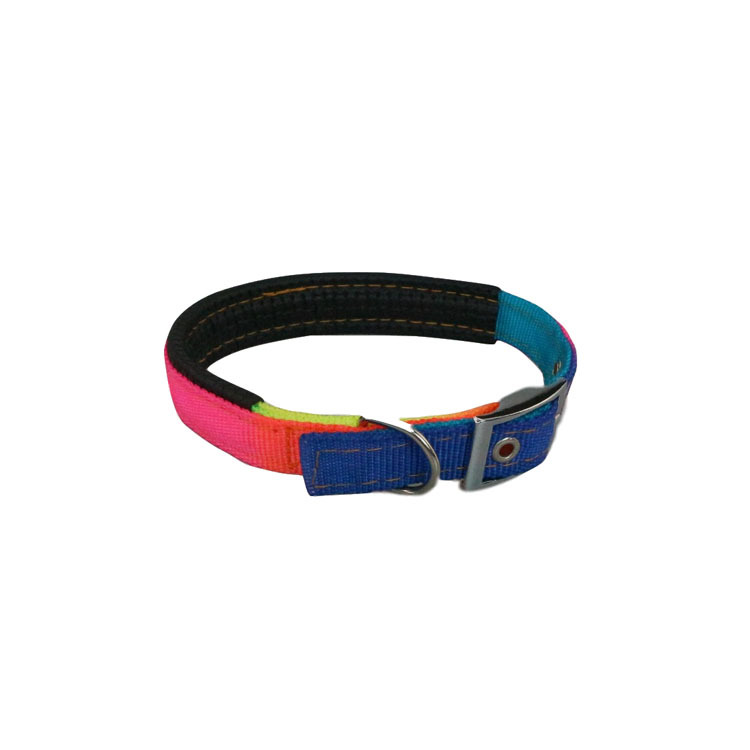 Rainbow Contrast Color Dog Traction Neck Ring Cool Earth-Style Processing Neck Ring Webbing Traction Belt