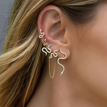 1Set Punk Antique Animal Rhinestone Snake Earrings Crazy Snake Stud Earrings Per