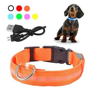 Image 1 - Usb recarregável cão de estimação led colar brilhante pet luminoso piscando colar ao ar livre andando cão noite suprimentos segurança