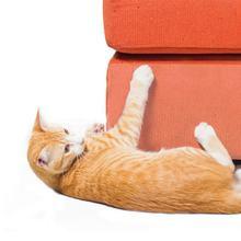 Рулонная лента против царапин для защиты мебели от кошек прозрачная