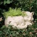 Gato blanco durmiendo con una cinta de lazo rosa florero decoración del hogar Accesorios florero de resina para plantas suculentas de flores