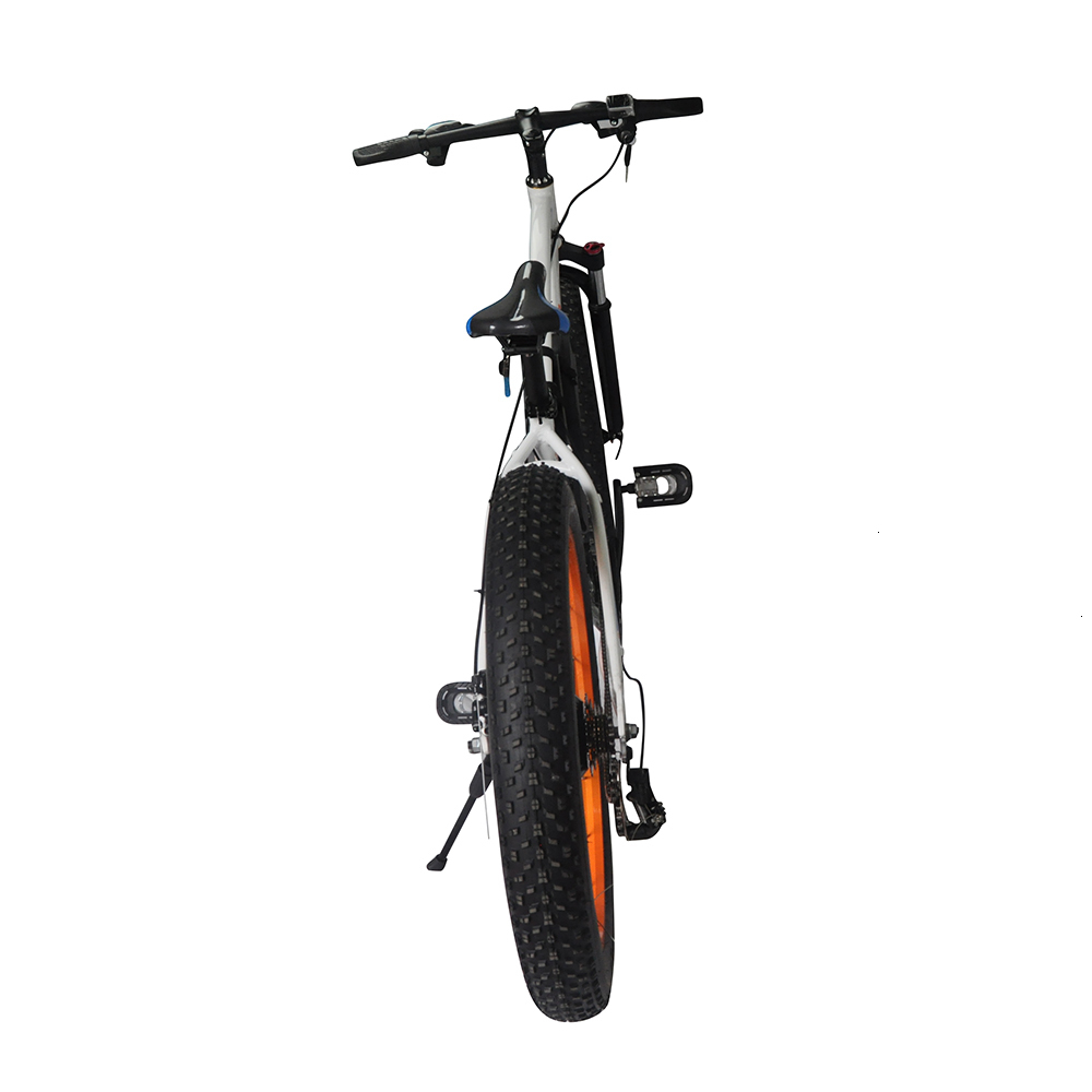 Popular E6-5 EcoRider E6-5 Electric Bike 350w Electric Bicycle with Lithium Battery 1