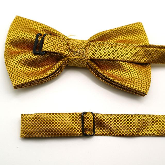 luxury Bright Silk Bow Ties 2 pcs Set 6