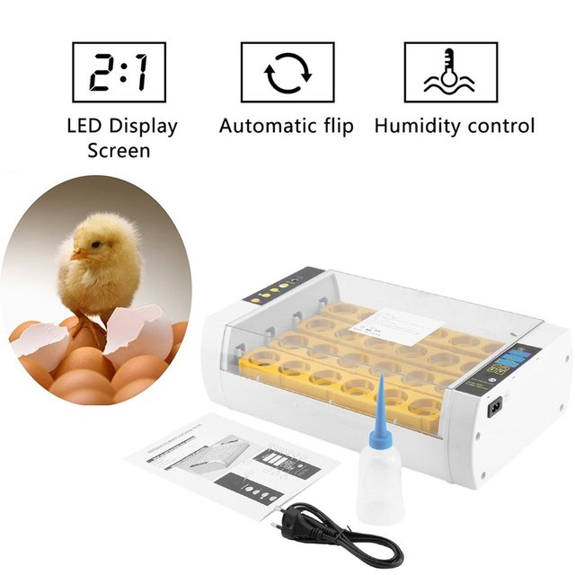 Fast Shipping Practical 24 Eggs Large Capacity Mini Incubator For Chicken Poultry Quail Eggs Home Use Automatic Egg Turning 4