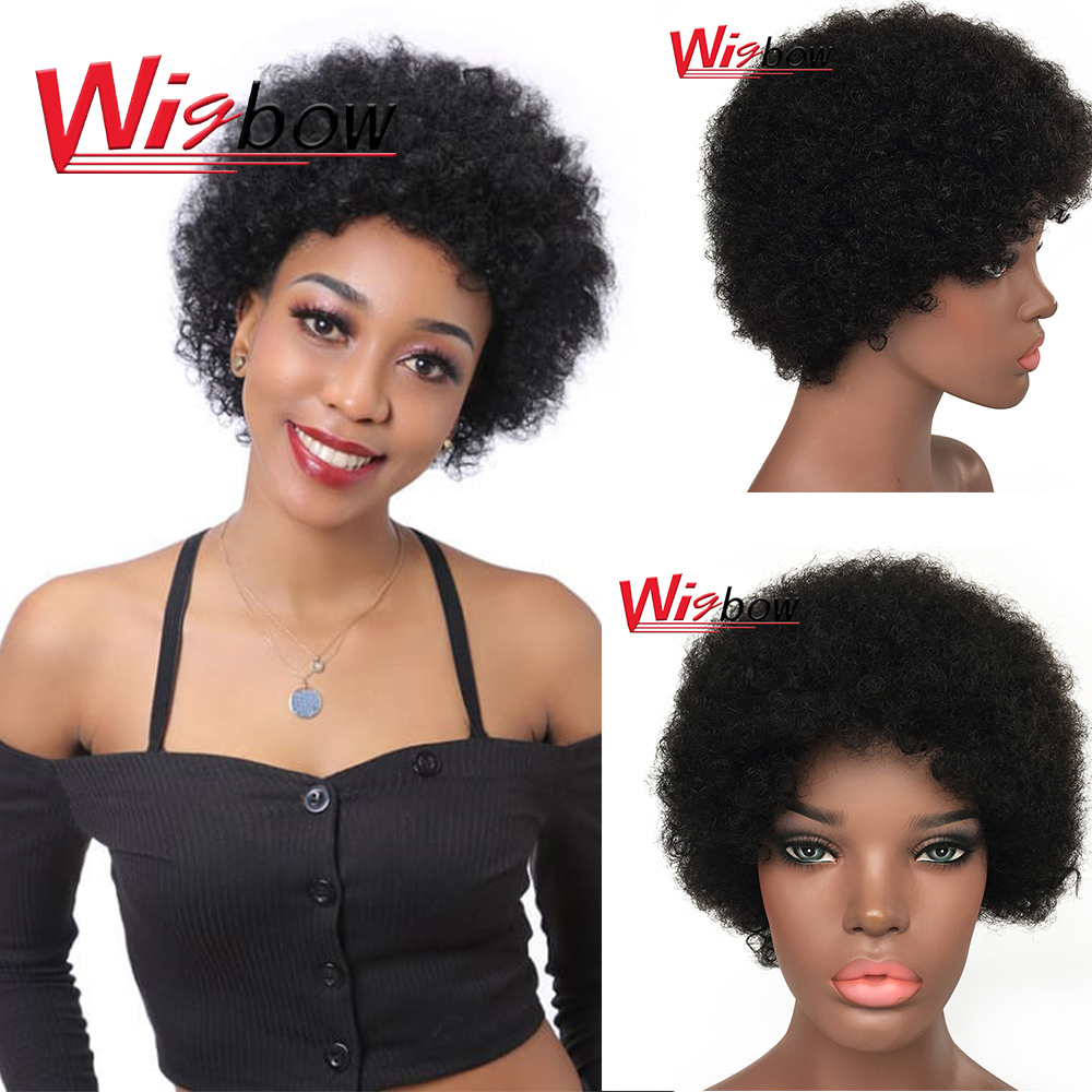 Afro Kinky Curly Wig With Brazilian Remy Human Hair Black Short Wigs For Women Brazilian Curly Human Hair Wigs Full Machine Made