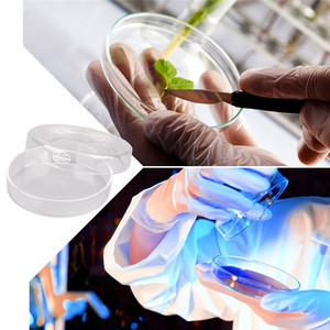 Glass Petri Dishes with Clear