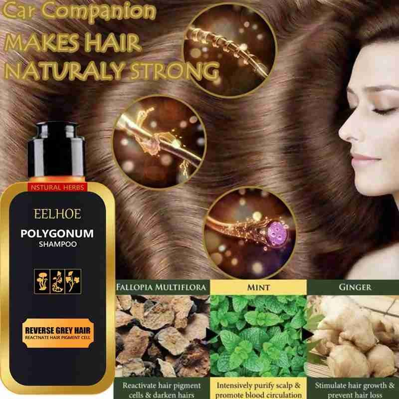 100ml Hair Shampoo Natural Organic Hair Darkening Growth Cleaning & Nourishing Anti-Grey Thick Repair Treatment Hair Shiny Hair