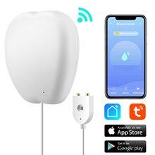 Tuya Wi Fi Apple Smart Flood Sensor Buzzer Type(Water Leak Detector)Google Home