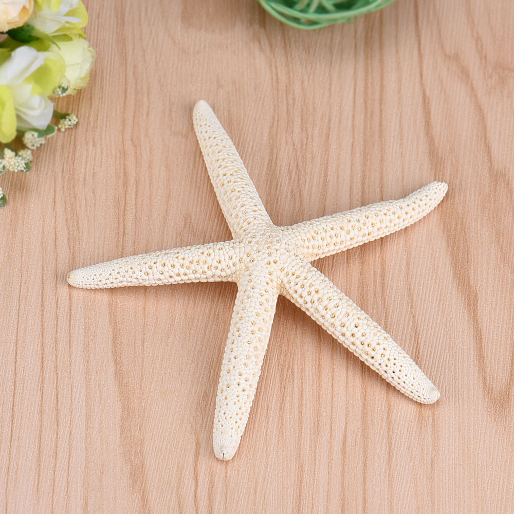 2019 1 Piece 10-12cm White Natural Finger Starfish Craft Decoration Natural Sea Star DIY Beach Cottage Decor