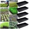 10Pcs Garden Plastic Plants Grow Trays Reusable Seeds Tray Nursery Pots Plant Flower Pot For Greenhouse Large Size Seeding Box