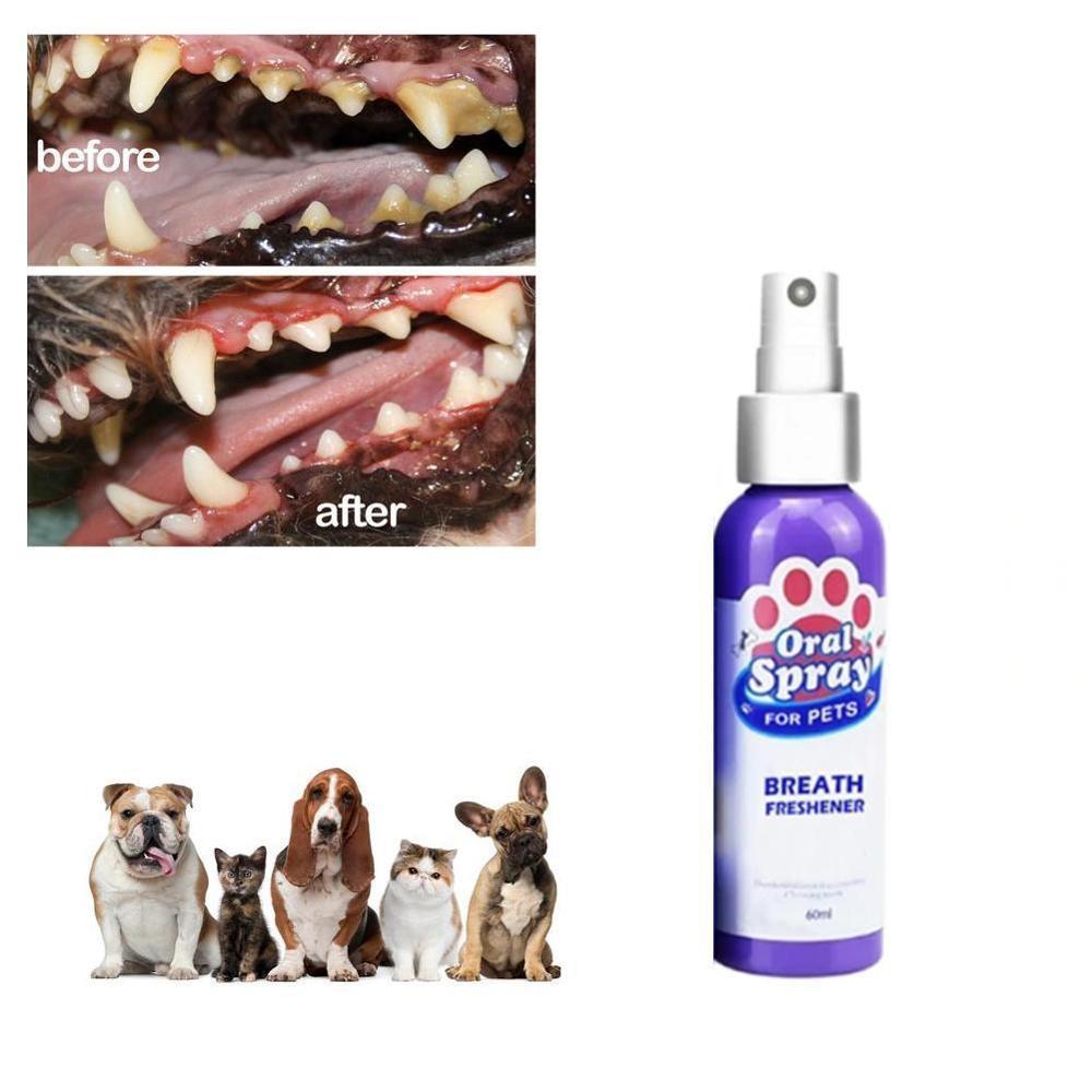 1 2 3pcs 60ml font b Pet b font Breath Freshener Via AliExpress Standard Shipping To