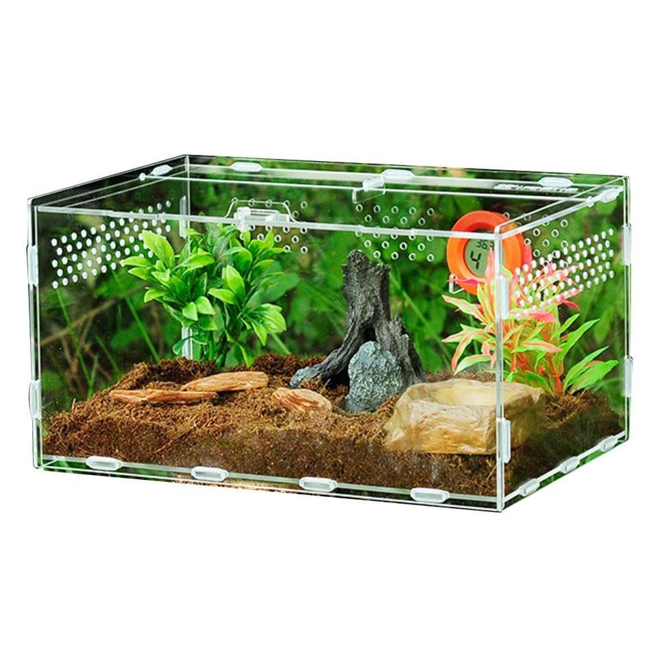 Chameleon Centipede Transparent Box Ornamental Box Spider Acrylic Terrarium Lizard Aional Reptile Breeding Box Terrarium