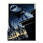 MT1533 Hot Batman Su...