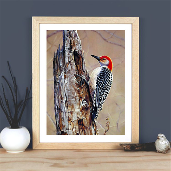 HUACAN 5D Diamond Painting Bird Full Square Round Drill Diamond Embroidery Cross Stitch Animal Home