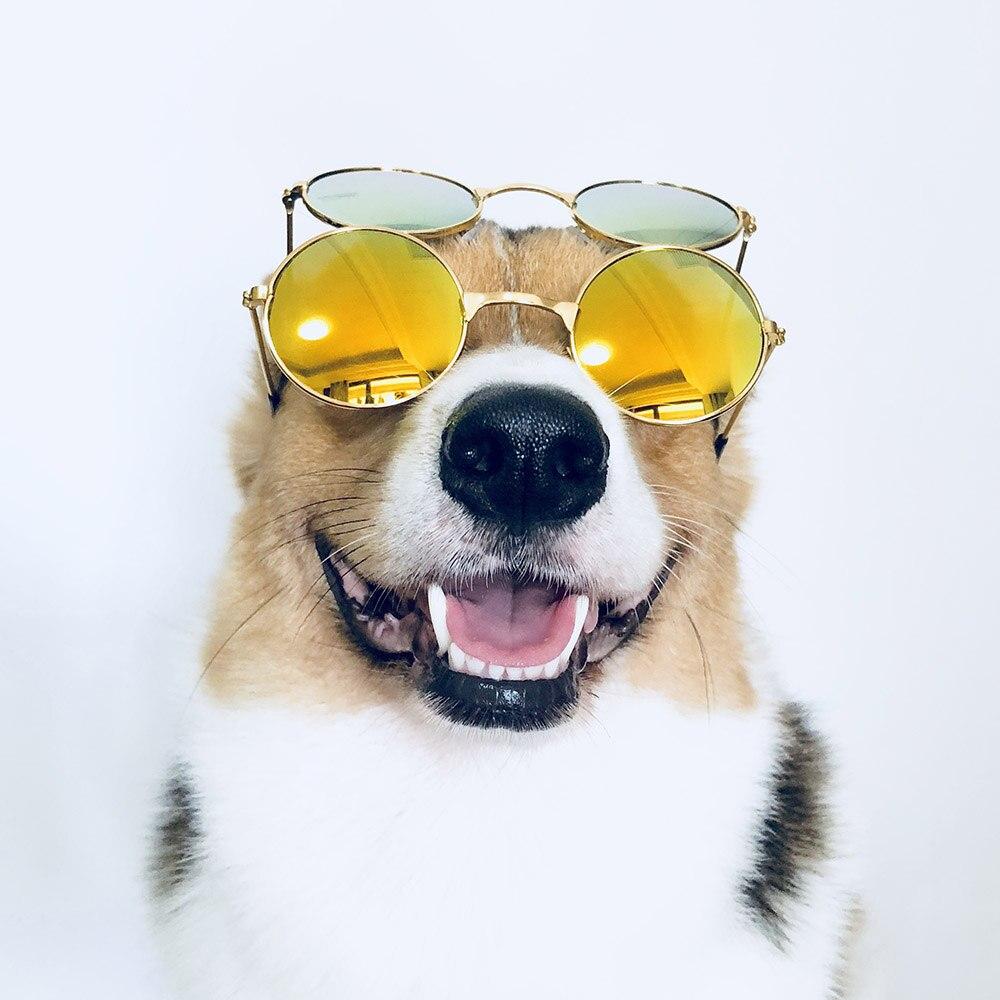 Medium Large Dog Glasses Fashion Eye wear Sunglasses For Cats Christmas Photos Props font b Pet
