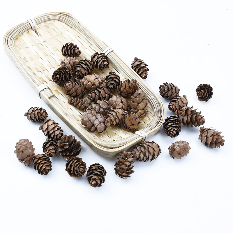 10PCS Natural Dried Flower Pine Cone Christmas Home Decorations Diy Gifts Box Needlework Bride Brooch Artificial Plants Cheap