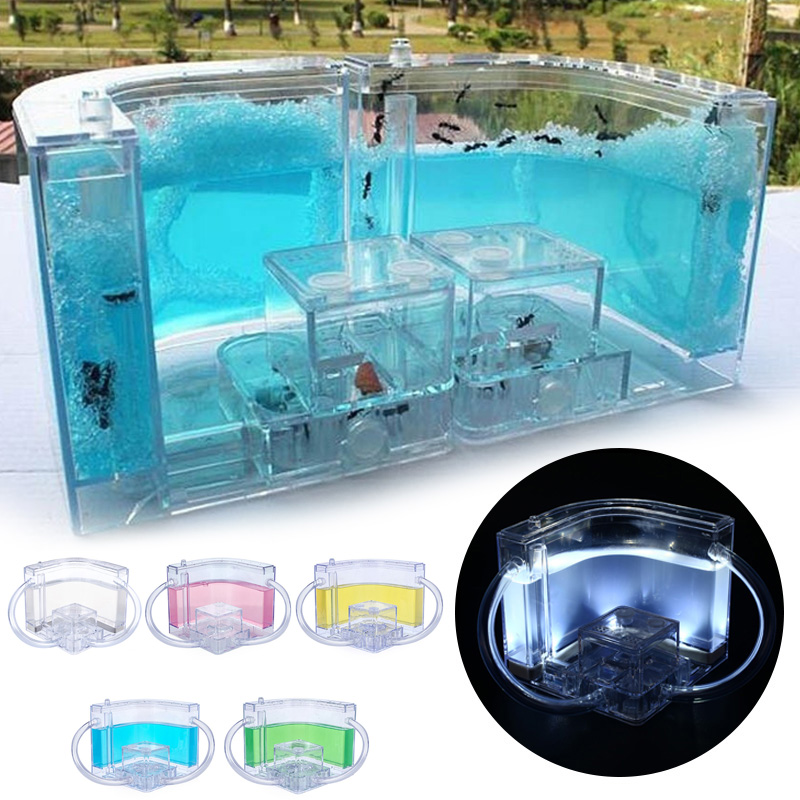 10.8CM Glowing Ants House Kids Gift Specially Fanny Ant Nest Art Insect Acrylic Ant Farm Transparent Villa Luminous Ant Farm