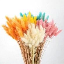 20 pçs cauda de coelho grama natural flores secas para decoração de casa lagurus ovatus arranjo flor real grama adereços