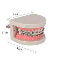 1 шт. Стоматологическая Ортодонтическая модель зуба с Орто-металлическим керамическим кронштейном арки проволоки Buccal трубки лигатуры Галстуки