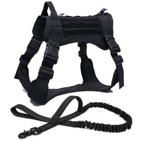 BK Harness and Leash