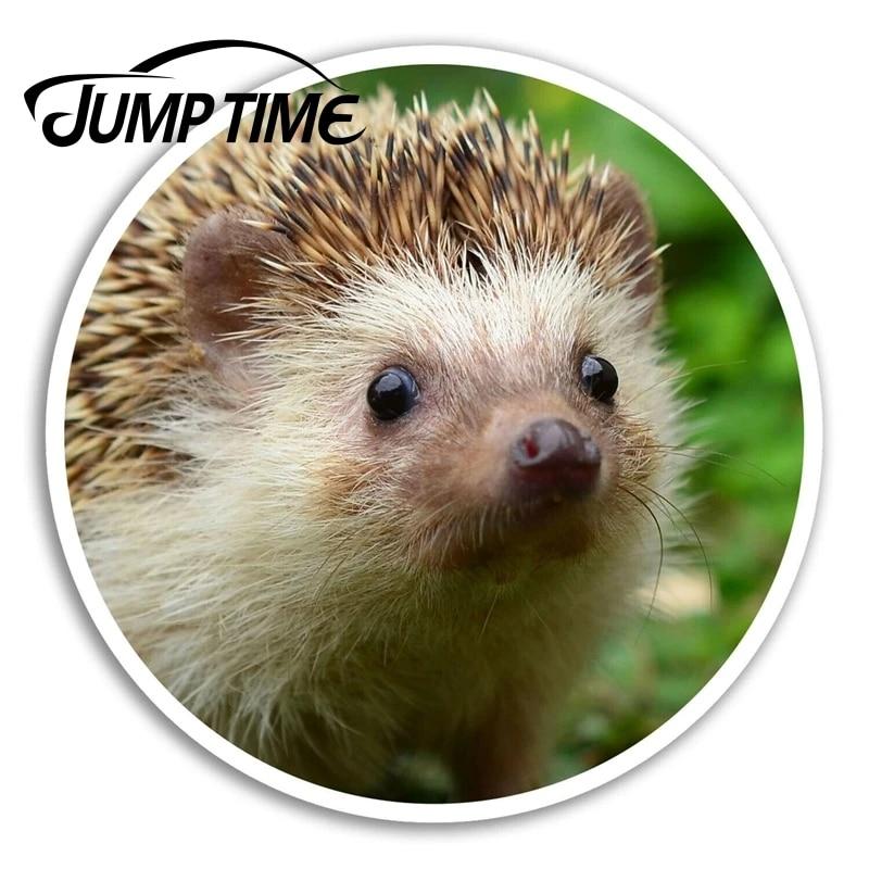 Sonic The Hedgehog Peeking Bomex Graphics