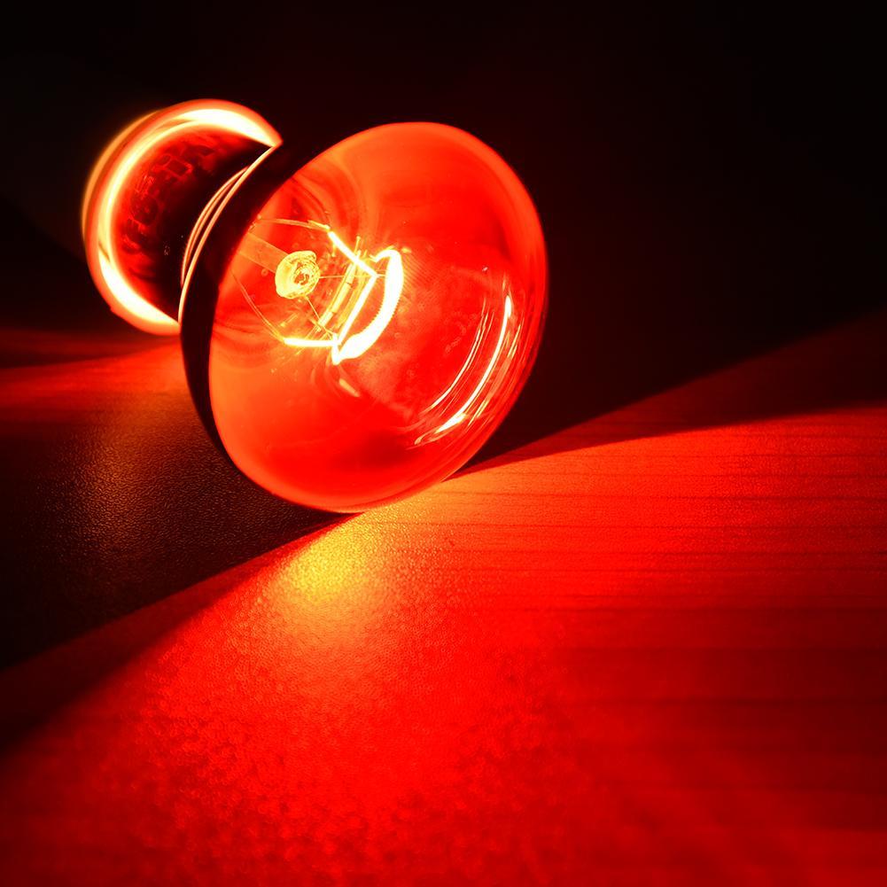 Pet Red Heating Lamp E27 Day Night For Amphibian Snake Lamp Heat Reptile Bulb UV Light 25W 50W 100W AC220-240V