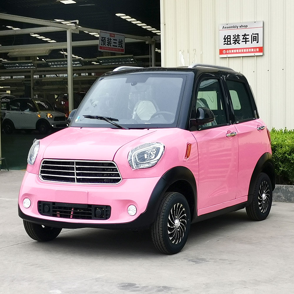 5kw New energy electric car adult ...